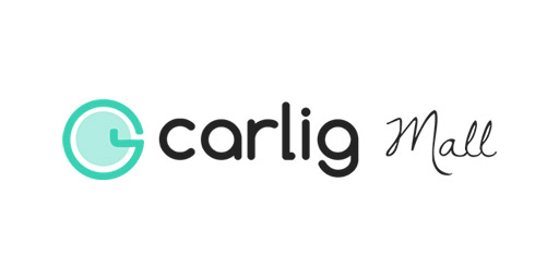 connect apac mobile security information technology company IT digital marketing agency online marketing strategy Carlig Mall-01 512x256